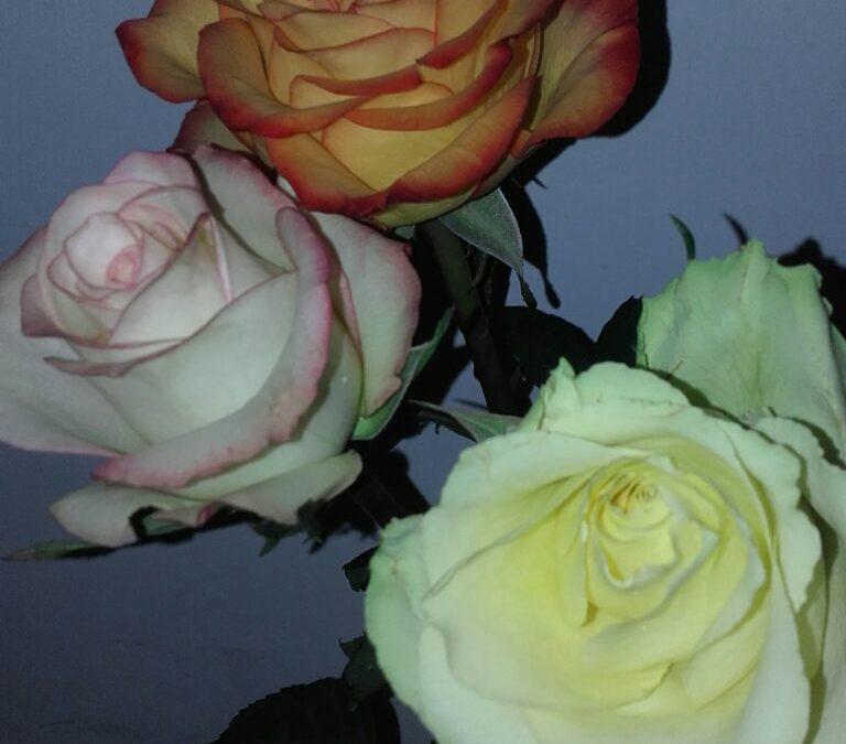 Бубнит, возвращается и дарит цветы